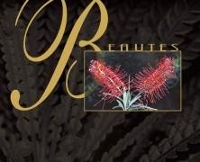«Beautés endémiques de la Nouvelle-Calédonie» de Jacqueline SCHMIDT-O'CONNOR et Jean-Michel SARRAILH
